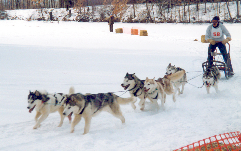 outdoor event venue for sled dog racing